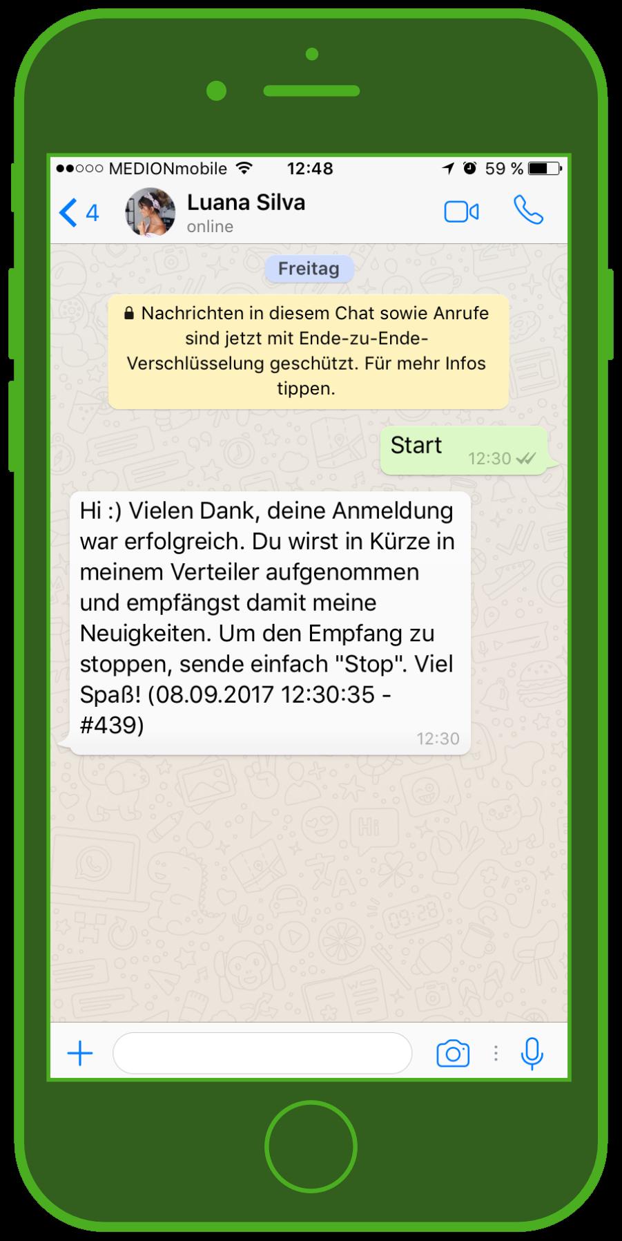 device-luana-silva-whatsapp-influencer-newsletter