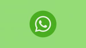 whatsapp messenger unternehmen