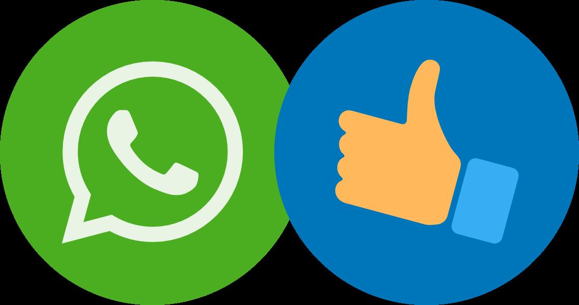 Digitalisierung der DIY-Branche mit Hilfe von WhatsApp