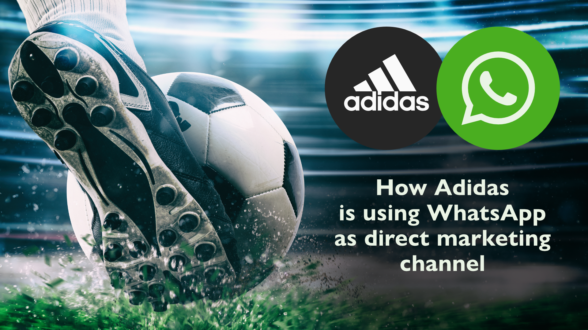 How Adidas Is Using Whatsapp As Successful Marketing Channel
