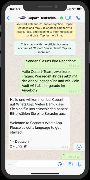 online-portale-messenger-device-copart-whatsapp-1