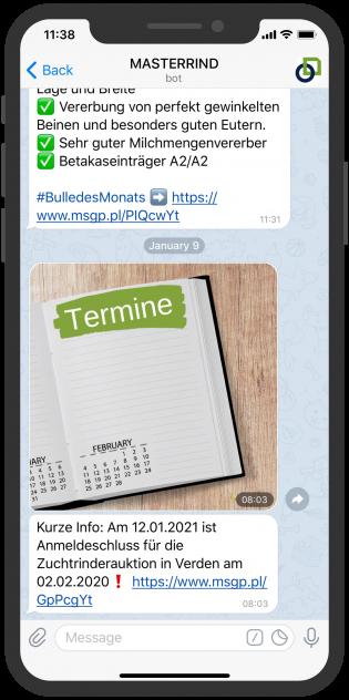 masterrind-telegram